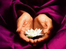 Izkušnje o tečaju meditacije